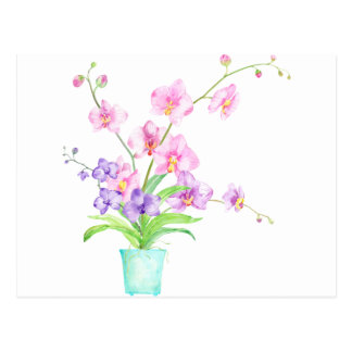 Watercolor Orchid in Pot Postcard