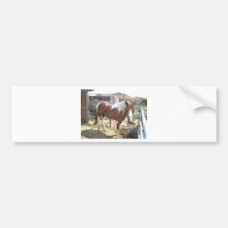 Watercolor Paint Horse Bumper Sticker
