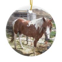 Watercolor Paint Horse Ceramic Ornament