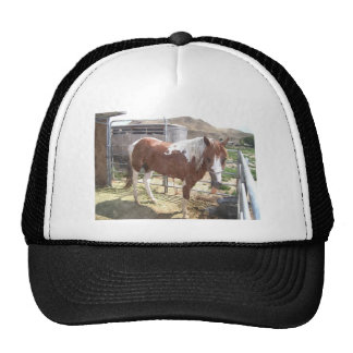 Watercolor Paint Horse Trucker Hat
