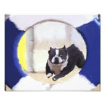 Watercolor painting of a Boston Terrier jumping Photographic Print