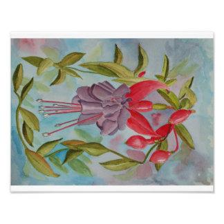 Watercolor painting of Fuschia Flower Photo Print