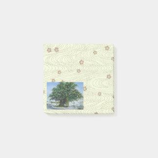Watercolor painting post-it notes of Banyan Tree