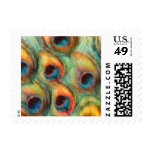 Watercolor Peacock Feathers Set 1117 Postage Stamp