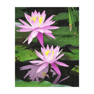 Watercolor Pink Water Lilies Canvas Print