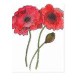 Watercolor Poppy Postcard