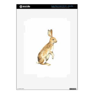 Watercolor Rabbit iPad 3 Decals