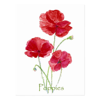Watercolor Red Poppy Flower Floral Painting Postcard