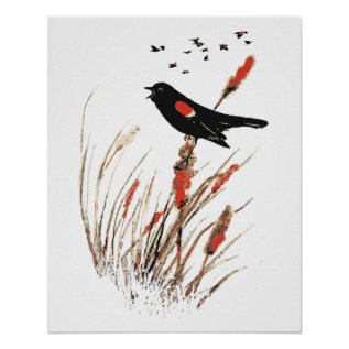 Watercolor Red Wing Blackbird Bird Nature Art Poster at Zazzle