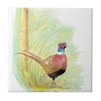 Watercolor Ring Necked Pheasant Bird Art Tile