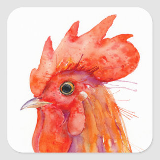Watercolor Rooster Portrait Golden Square Sticker