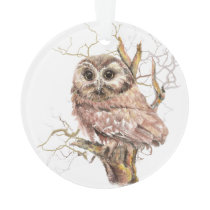Watercolor Saw Whet Owl Bird Nature Art Ornament