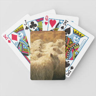 Watercolor Sheep Playing Cards