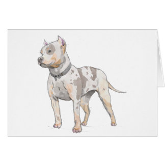 Watercolor Sketch Pit Bull Dog Card
