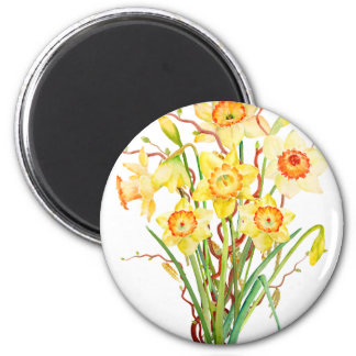 Watercolor Spring flower daffodils 2 Inch Round Magnet