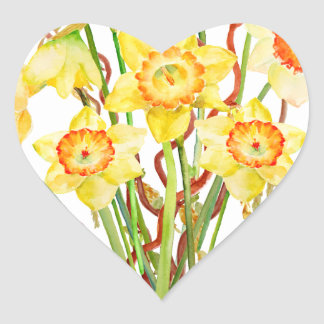 Watercolor Spring flower daffodils Heart Sticker
