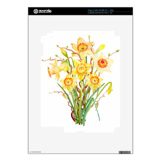Watercolor Spring flower daffodils iPad 2 Decal