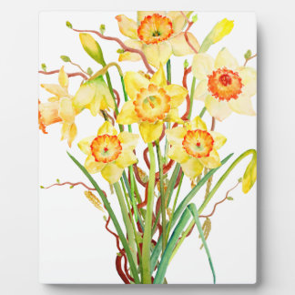 Watercolor Spring flower daffodils Plaque