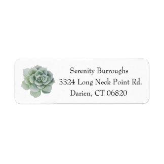 Watercolor Succulent Cactus Mint Green Label