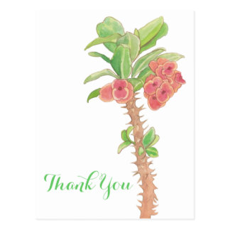 Watercolor Succulent Crown of Thorns Thank You Postcard