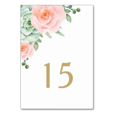 watercolor succulent peach roses table number