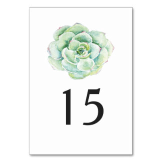 watercolor succulent wedding table number