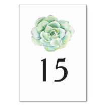 watercolor succulent wedding table number card