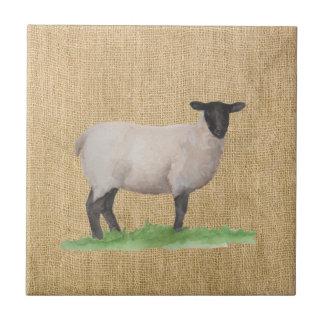 Watercolor Suffolk Sheep Tile