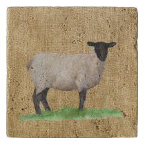 Watercolor Suffolk Sheep Trivet
