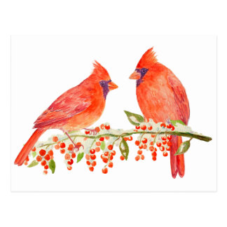 Watercolor Two Cardinals post Card