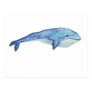 Watercolor Whale Postcard