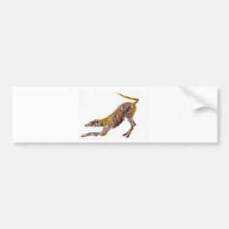Watercolour abstract painting of lurcher dog bumper sticker
