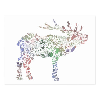 Watercolour Deer Postcard