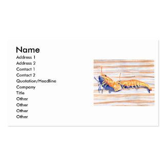 Watercolour del camarón en un muelle, cebo de tarjetas de visita