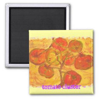 watercolour del racimo del tomate (lema) imán cuadrado