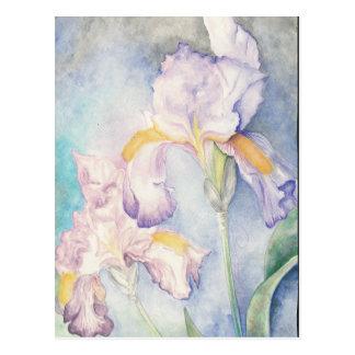 Watercolour floral de los iris más suaves postal