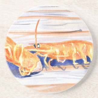 Watercolour of Shrimp on a dock, fishing bait Coaster