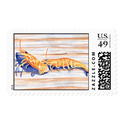 Watercolour of Shrimp on a dock, fishing bait Postage Stamp