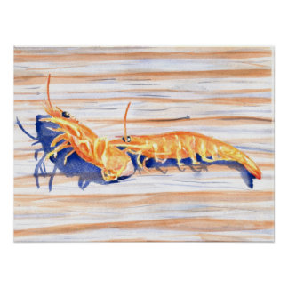 Watercolour of Shrimp on a dock, fishing bait Poster