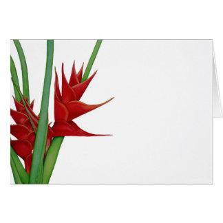 Watercolour rojo de Heliconia Felicitación