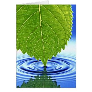 Waterdrop Leaf Card
