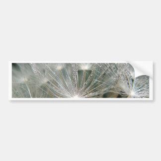 Waterdrops brillantes en un diente de león blanco pegatina para auto