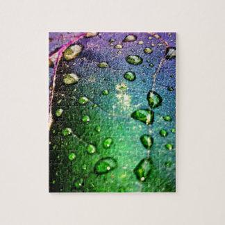Waterdrops colorido en la hoja puzzle