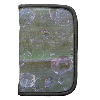 Waterdrops en una hierba verde-gris organizador