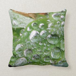 Waterdrops frescos de la almohada cojín decorativo