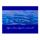 Waterdrops Postcard