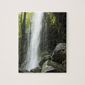 Waterfal, in rainforest, Dominica, Emerald Pool Jigsaw Puzzle