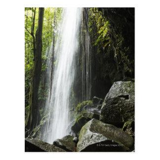 Waterfal, in rainforest, Dominica, Emerald Pool Postcard