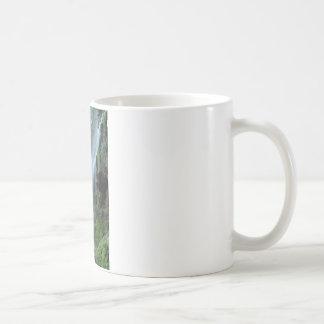 waterfall-2259 coffee mug