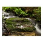 Waterfall 2 post card